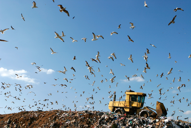 renergy-5-ways-landfills-impact-enviornment