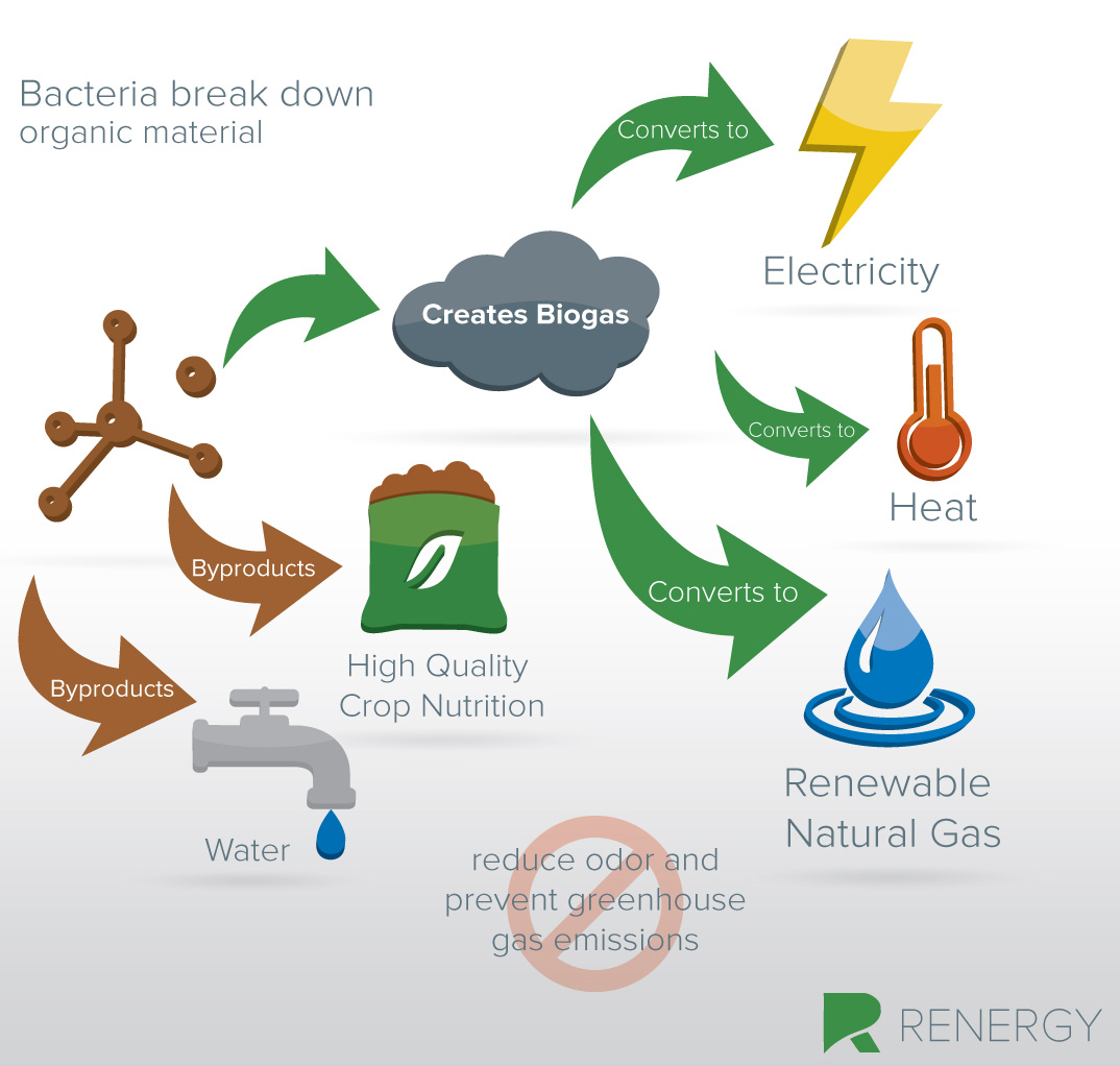 Natural Gas From Food Waste