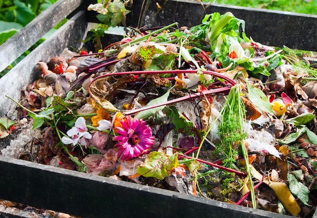 Composting at Home: Dos & Don'ts