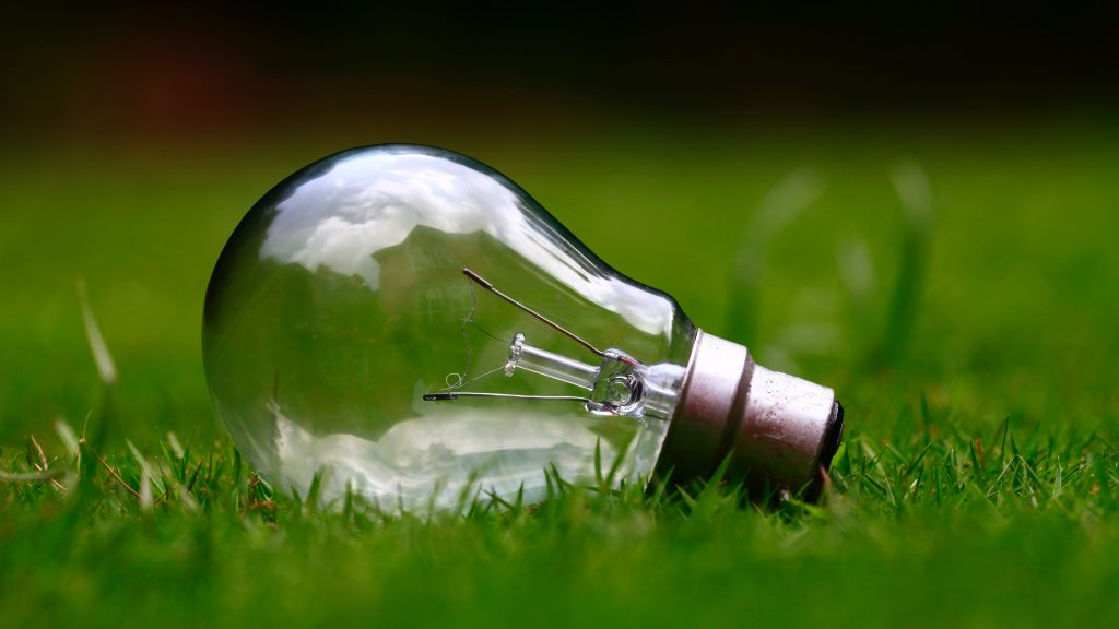 lightbulb in grass facts on anaerobic digestion
