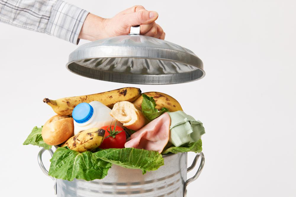 fighting food waste trash can